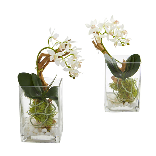 Mini Phalaenopsis Orchid Artificial Arrangement (Set of 2)