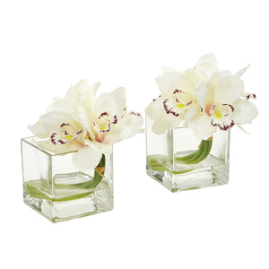 Cymbidium Orchid Artificial Arrangement in Glass Vase (Set of 2) - Cream