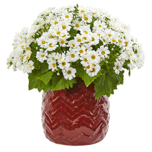Daisy Artificial Arrangement in Red Planter - White