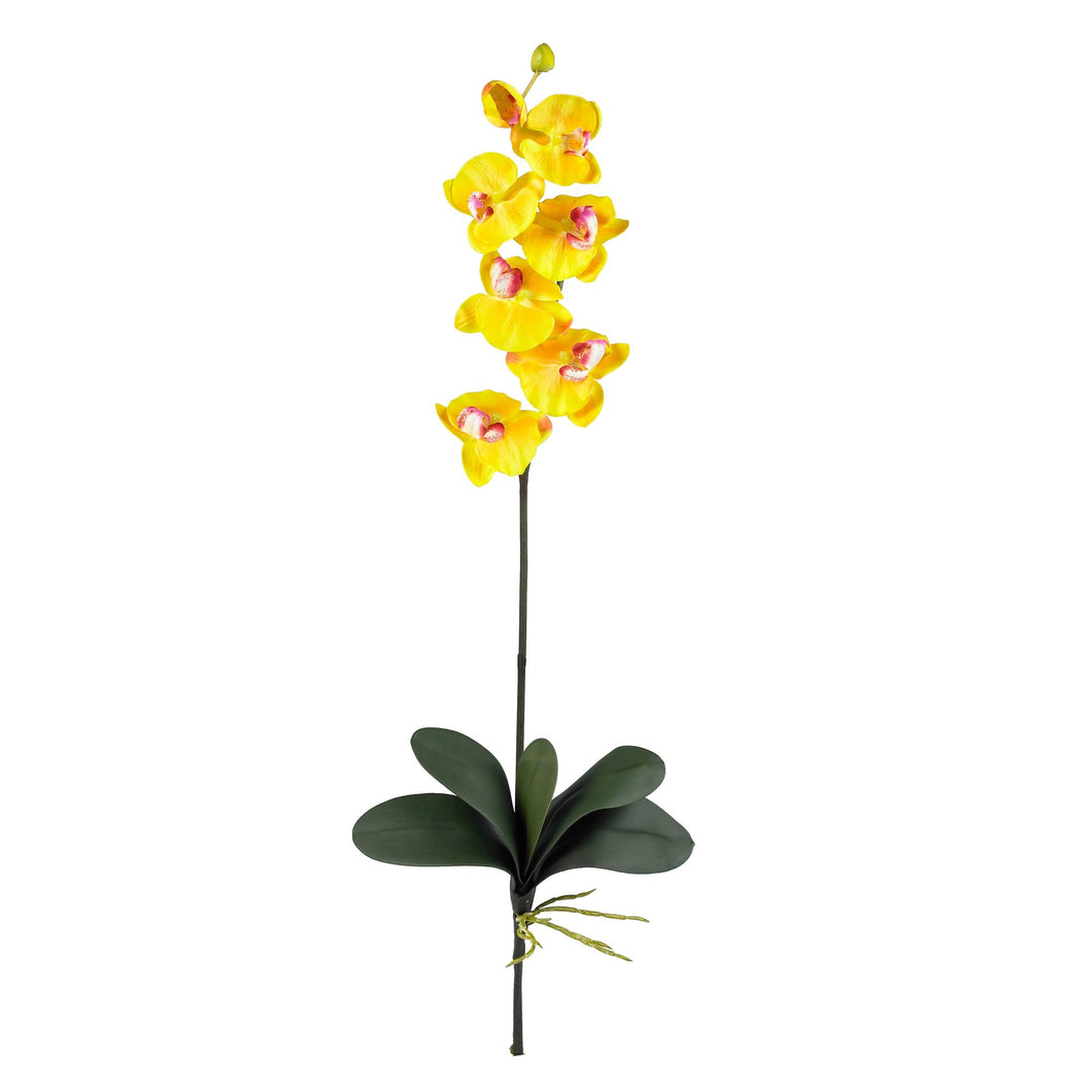 Phalaenopsis Silk Orchid Flower w/Leaves 6 Stems) - Gold
