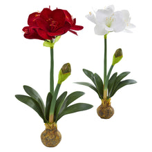"Load image into Gallery viewer, 25"" Amaryllis Artificial Flower (Set of 2)"