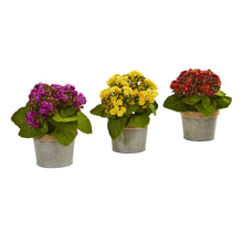 Load image into Gallery viewer, Kalanchoe Artificial Arrangements (Set of 3)