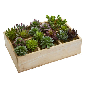 "12"" Mixed Succulent Garden in Tray Artificial Plant"