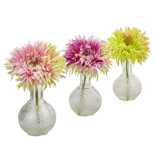 Daisy with Glass Vase (Set of 3)