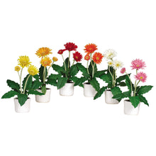 Load image into Gallery viewer, Gerber Daisy w/White Vase (Set of 6)