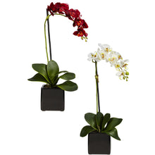 Load image into Gallery viewer, Phaleanopsis Orchid w/Black Vase Silk Arrangement (Set of 2)