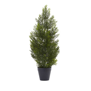 2' Mini Cedar Pine Tree (Indoor/Outdoor)