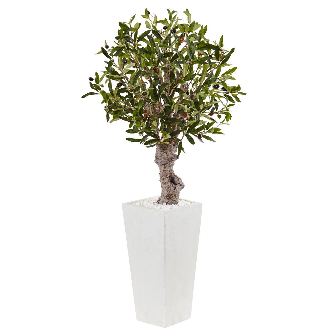 3.5' Olive Tree in White Tower Planter