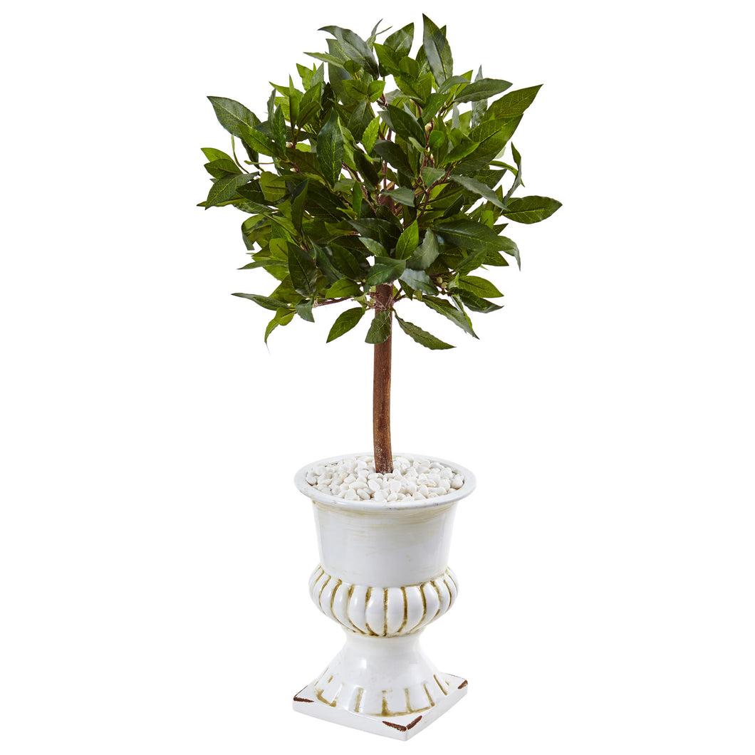 2.5' Sweet Bay Mini Topiary Tree in White Urn