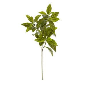 "26"" Coffee Leaf Artificial Plant (Set of 12) (Real Touch)"