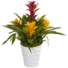 Load image into Gallery viewer, Bromeliad in White Swirl Vase