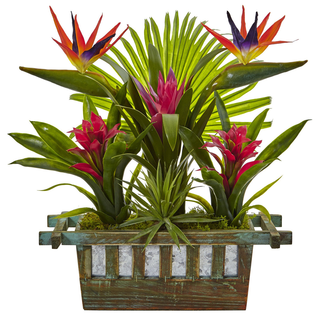 Birds of Paradise and Bromeliad in Planter