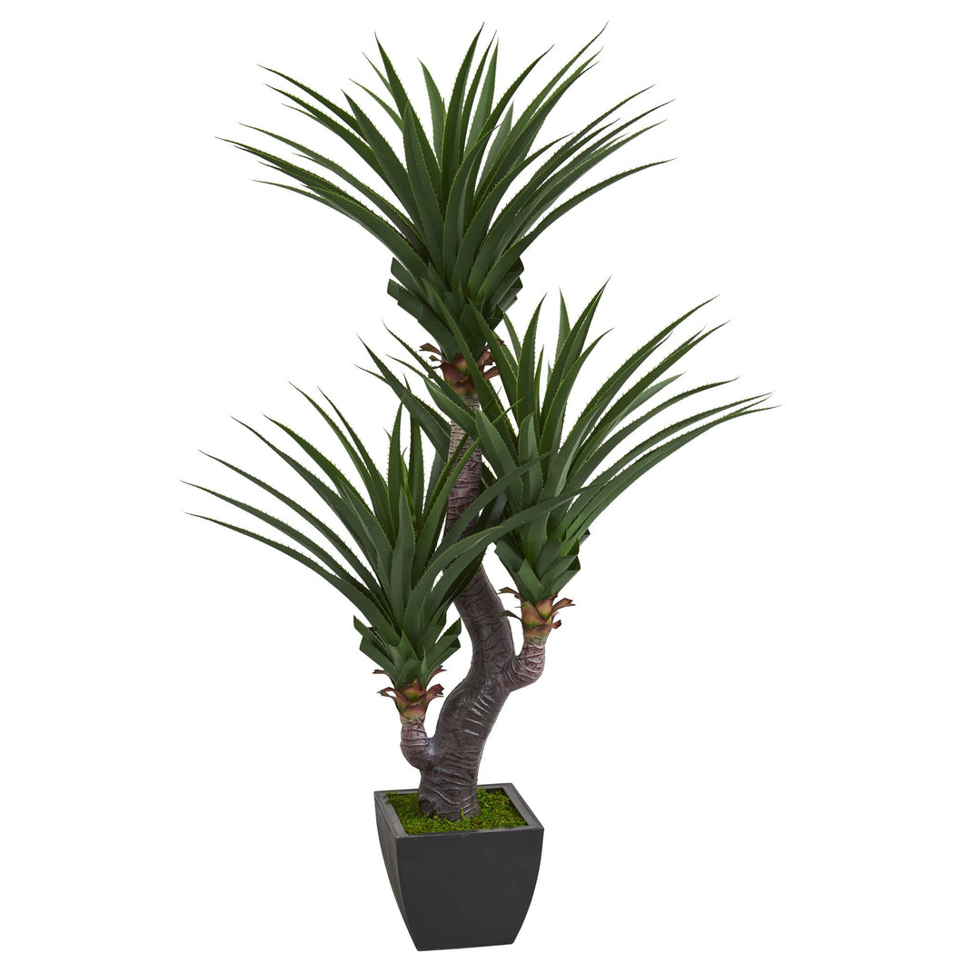 6' Dracaena Artificial Plant with Black Planter