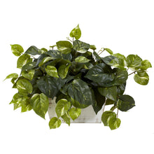 Load image into Gallery viewer, Pothos w/White Wash Planter Silk Plant