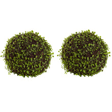 "Load image into Gallery viewer, 9"" Mohlenbechia Ball (Set of 2)"
