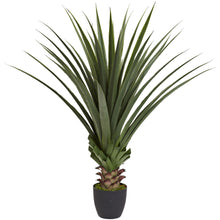 Load image into Gallery viewer, 4' Spiked Agave Plant