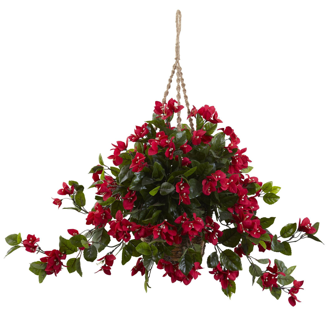 Bougainvillea Hanging Basket UV Resistant (Indoor/Outdoor)