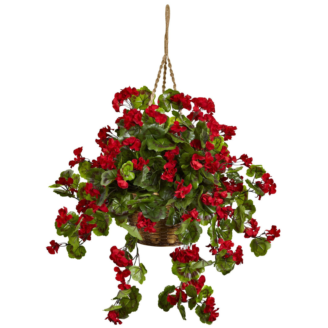 Geranium Hanging Basket UV Resistant (Indoor/Outdoor)
