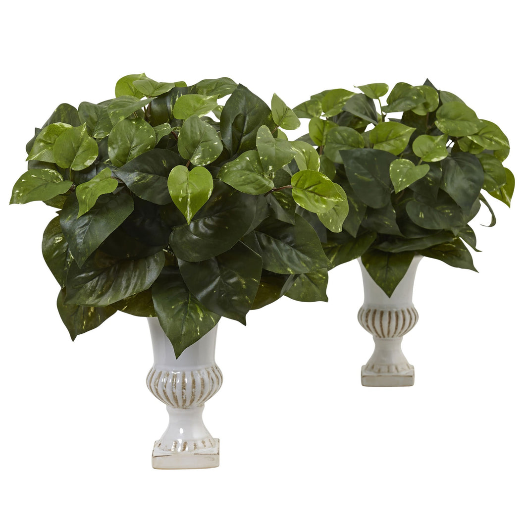 Pothos Silk Plant with Urn (Set of 2)