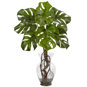Monstera Plant with Vase
