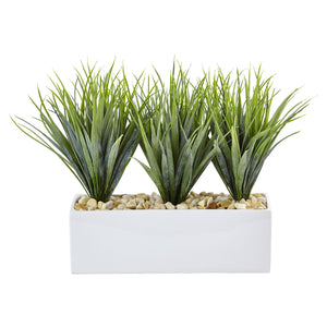 Vanilla Grass in Rectangular Planter