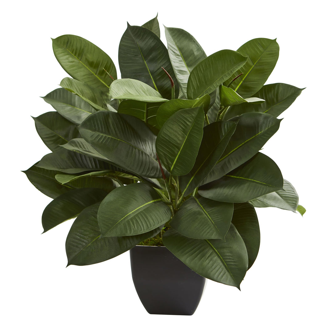 Oak Ficus Artificial Plant