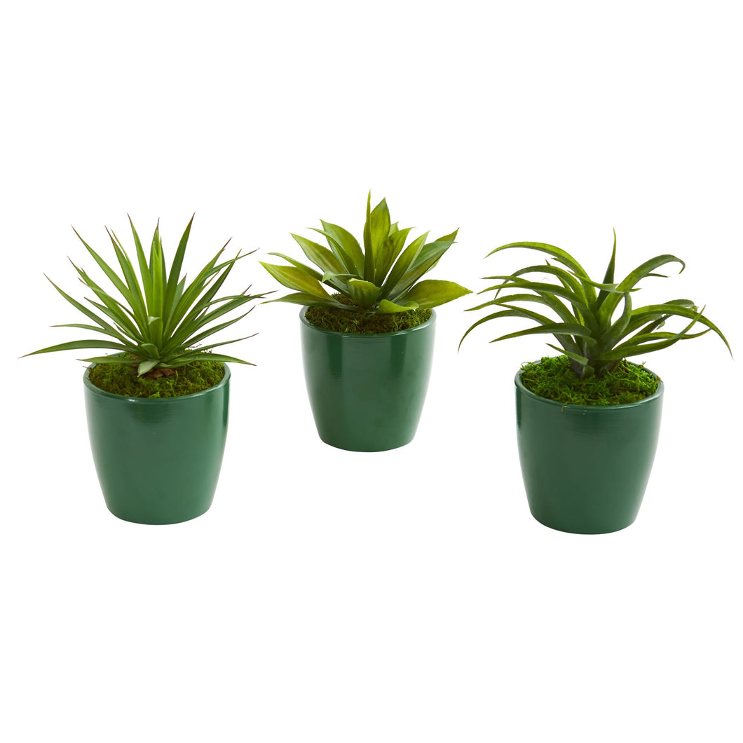 Mini Agaves Artificial Plant in Green Planter (Set of 3)