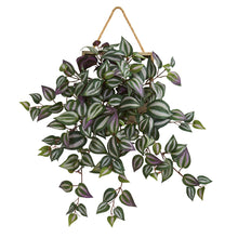 "Load image into Gallery viewer, 20"" Wandering Jew Artificial Plant in Decorative Hanging Frame"