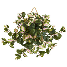 "Load image into Gallery viewer, 24"" Hoya Artificial Plant in Decorative Hanging Frame"