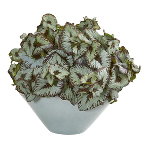 Rex Begonia Artificial Plant in Green Vase