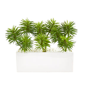 Spiky Succulent Garden Artificial Plant in White Ceramic Vase