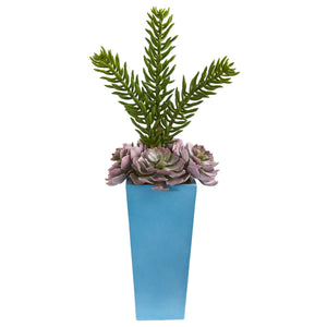 "33"" Echeveria and Spiky Succulent Artificial Plant in Blue Planter"