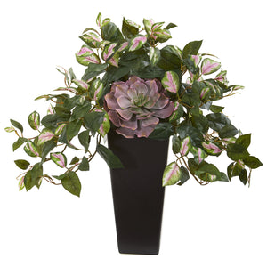 "22"" Echeveria Succulent and Hoya Artificial Plant in Black Vase"