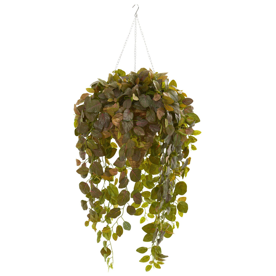 Fittonia Artificial Plant in Hanging Cone Basket (Real Touch) - Burgundy