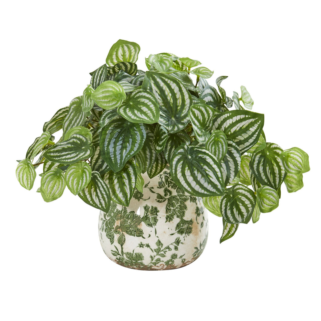 Watermelon Peperomia Artificial Plant in Vase (Real Touch)