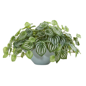 "19"" Watermelon Peperomia Artificial Plant in Green Vase (Real Touch)"
