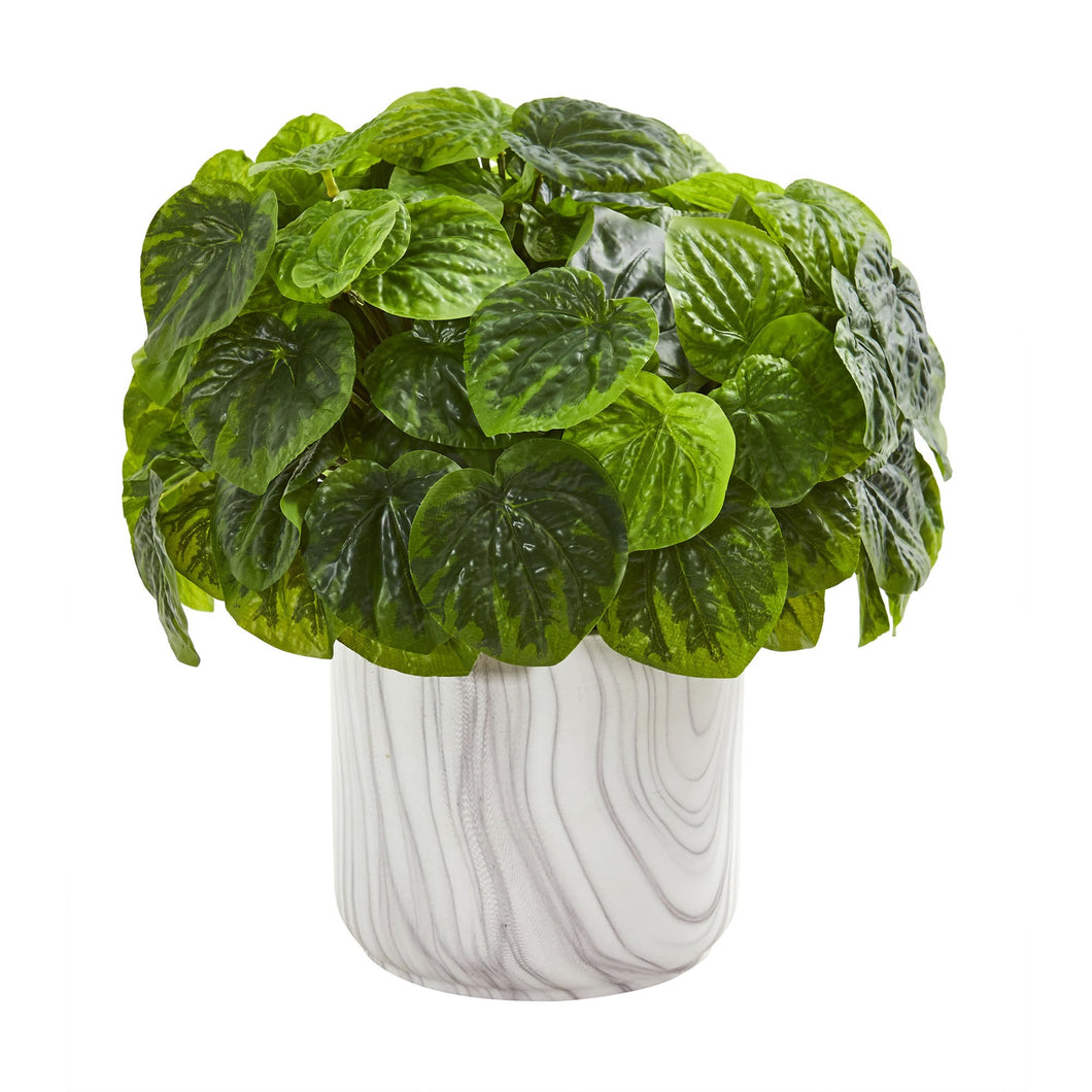 Peperomia Artificial Plant in Marble Vase (Real Touch)
