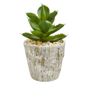 Succulent Artificial Plant in Weathered Oak Planter