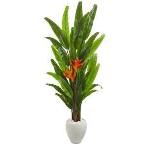 6.5' Heliconia Artificial Plant in White Planter