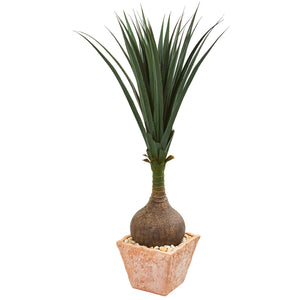 "58"" Yucca Artificial Plant in Terra Cotta Planter"