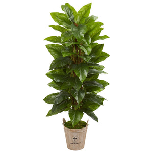 "63"" Large Leaf Philodendron Artificial Plant in Farmhouse Planter (Real Touch)"