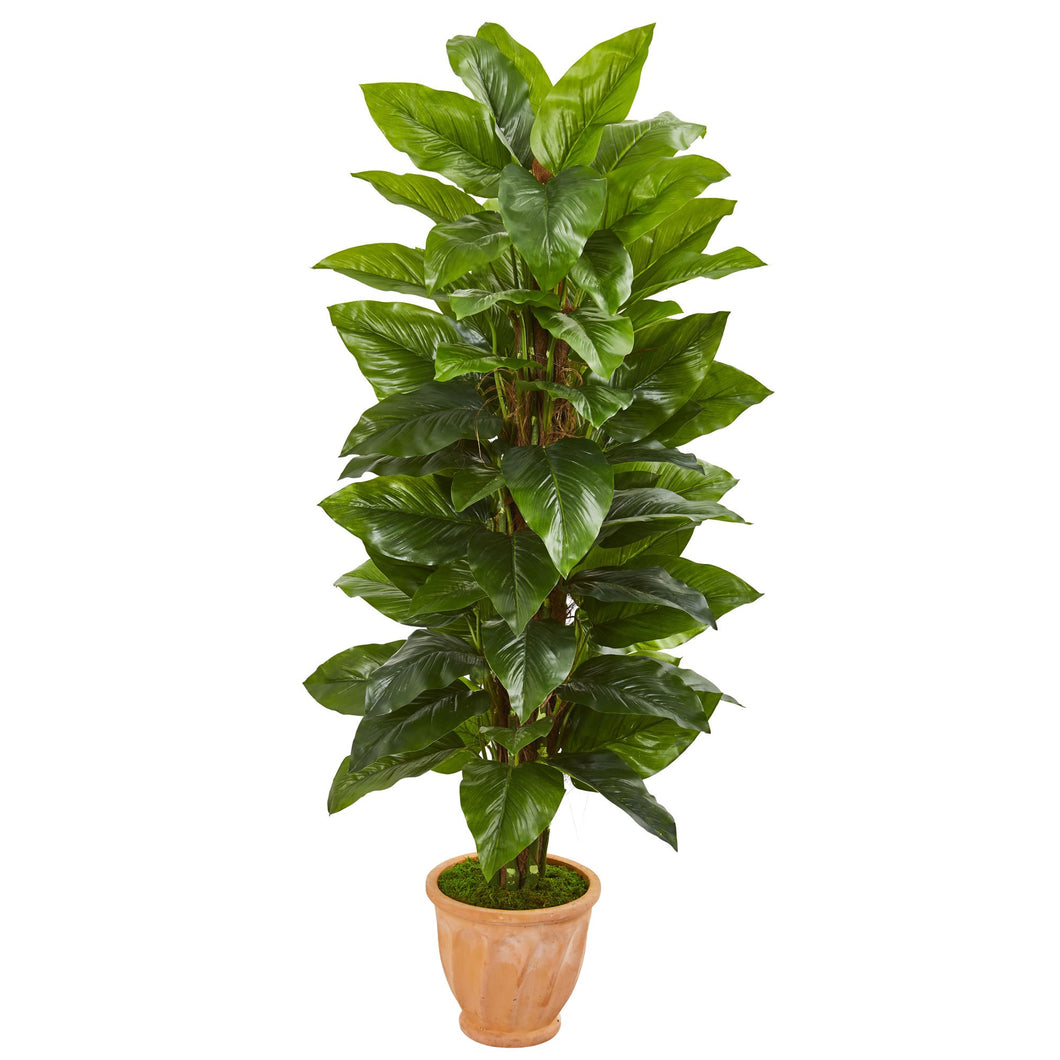 5' Large Leaf Philodendron Artificial Plant in Terra Cotta Planter (Real Touch)