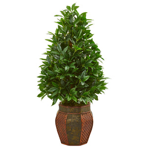 3.5' Bay Leaf Cone Topiary Artificial Tree in Decorative Planter
