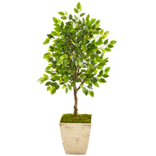 "Load image into Gallery viewer, 39"" Ficus Artificial Tree in Country White Planter"