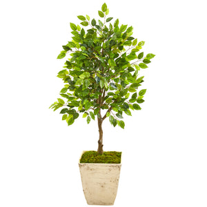 "39"" Ficus Artificial Tree in Country White Planter"
