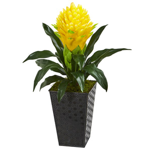 "18"" Ginger Artificial Plant in Black Embossed Tin Planter"