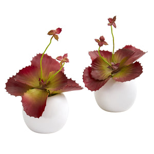 "9"" Succulent Artificial Plant in White Planter (Set of 2)"