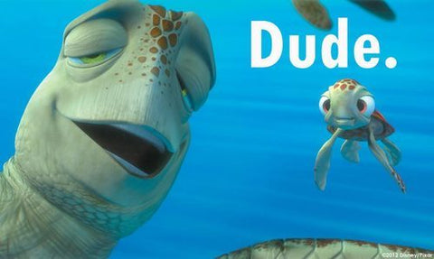 crush the turtle from finding nemo saying 'dude'