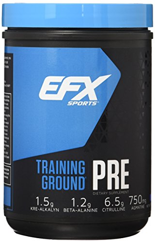 EFX Sports Training Ground Pre Workout Powder, Blueberry, 500 Gram: Health & Personal Care