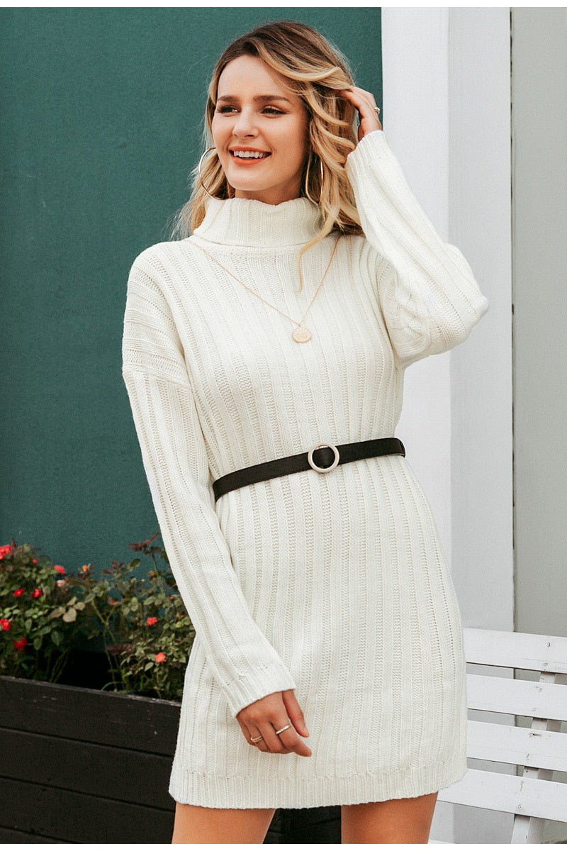 Knitted Turtle Neck Sweater Dress - Lady Galore